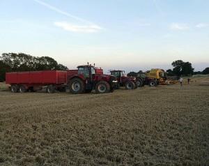 sigridshoj-jordbrug-entreprise-gront-arbejde-10